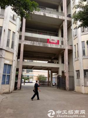 松岗汽车站2000方一楼厂房 带政府补贴创意科技园-图2