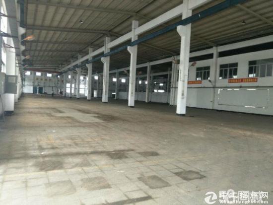 东升8米高钢构4000平方厂房出租