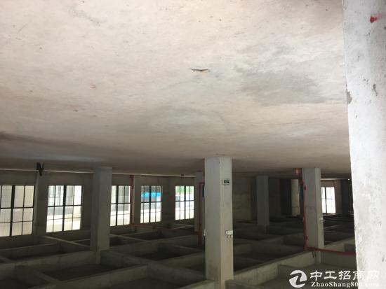 南宁五象东厂房仓库出售420万1700㎡-图2