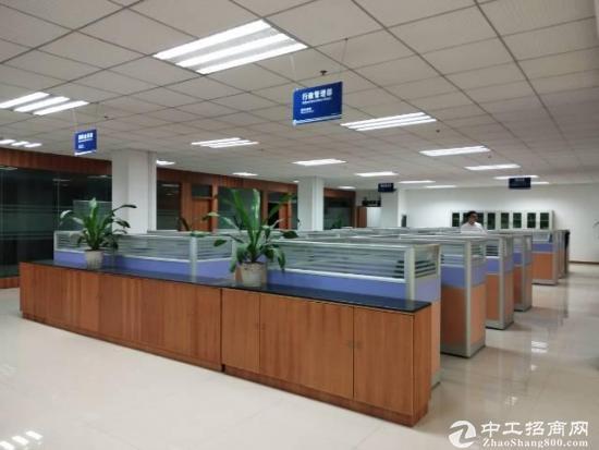 龙岗电商办公贸易高新产业研发产业园大中小厂房分出租
