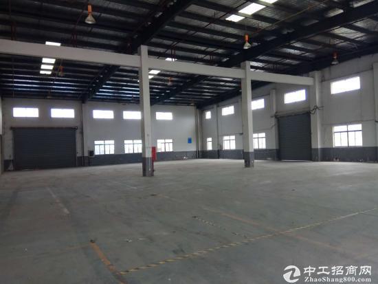 张浦1400平单层厂房出租,高10米钢构厂房