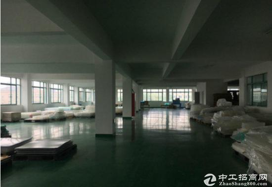 常平岗梓出租楼上1800平方标准厂房带地坪漆有电梯