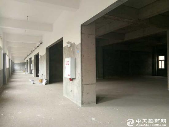 厂房出租:100-2000平米-图2