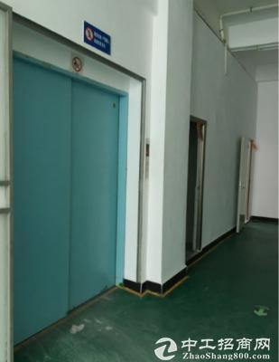 精装修二楼厂房1200招租