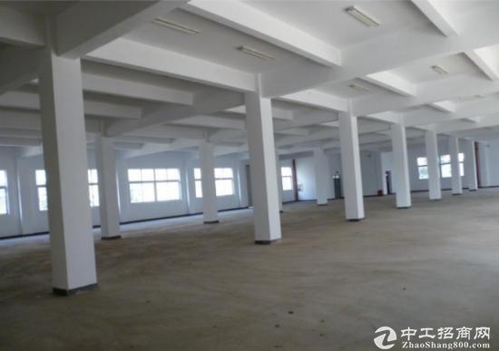常平镇出租一楼1500平方水电齐全标准厂房急租