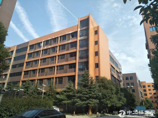 武汉东西湖独门独栋工业厂房出售(可分割)-图5