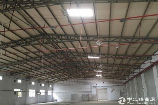 龙华单一层铁皮房2400平米