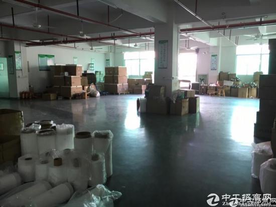 龙华新区大浪工业区800平标准厂房招租-图2