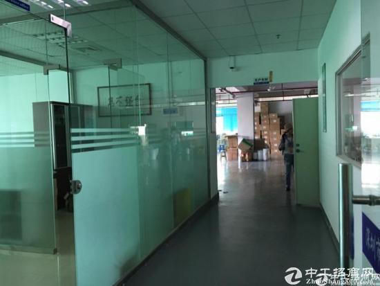龙华新区大浪工业区800平标准厂房招租-图4