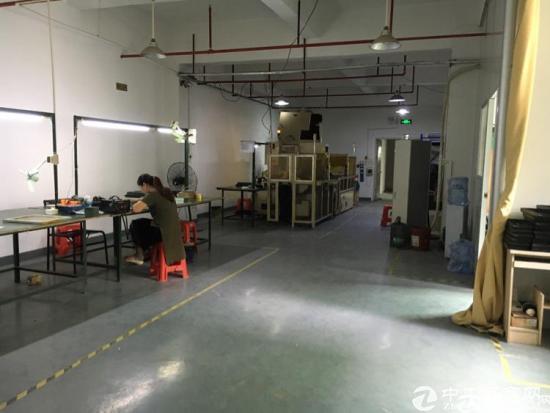 龙华新区大浪工业区800平标准厂房招租