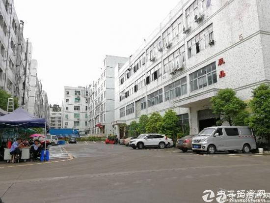 石岩水田第四工业区楼上带装修1300平厂房出租