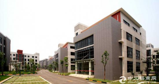 园区小面积独栋588平方办公仓储展示50年绿证厂房-图3