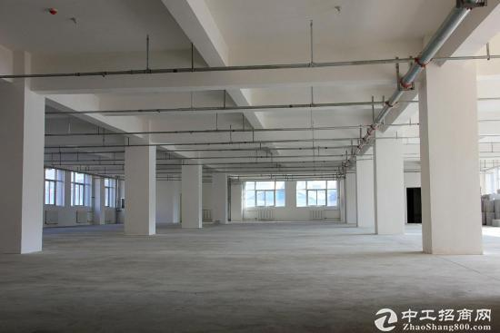 黄河北3600平独栋厂房独立出口