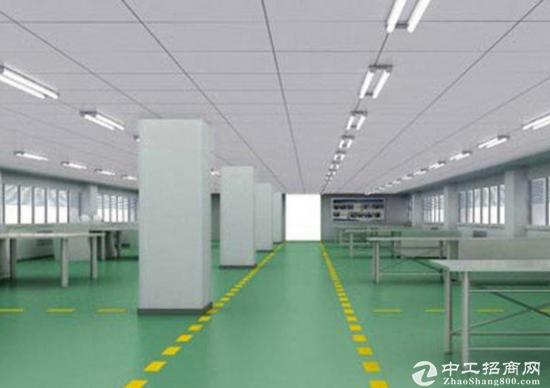 光明田寮新出楼上2000平形象好厂房招租-图2