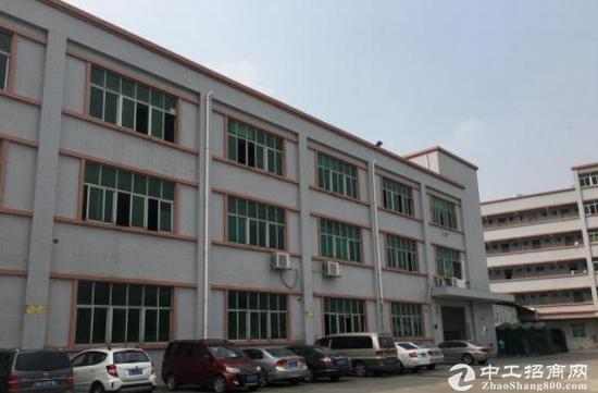 福永新田标准一楼550平格局方正厂房招租-图2