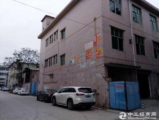 深圳龙岗区龙西清水路厂房3楼出租-图2