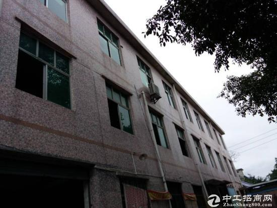 深圳龙岗区龙西清水路厂房3楼出租-图3