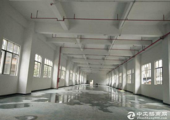 宝安福永凤凰一楼1000平标准厂房