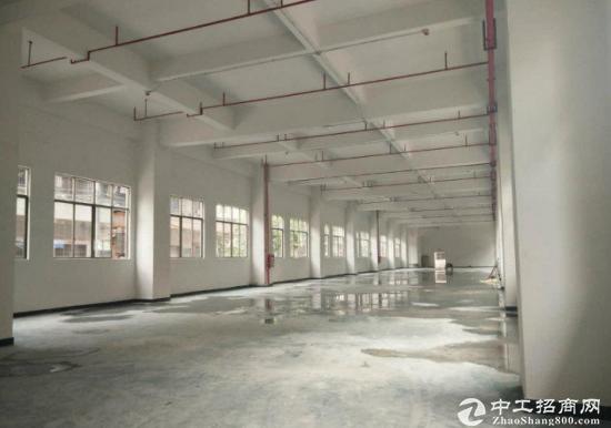 宝安福永凤凰一楼1000平标准厂房-图4