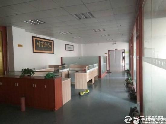 大浪电子商务厂房700带豪华装修招租