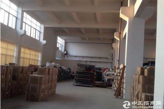 东莞石碣标准厂房一楼面积900方-图3