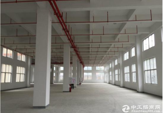 道滘一楼厂房900平方有精装办公室