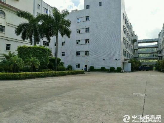 龙华大浪新百丽附近一楼高度5.5 厂房 650平米-图2
