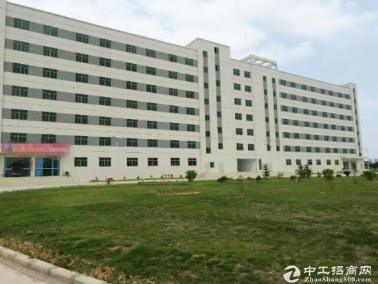 江门高新区20000平米独栋厂房招租 可生产可研发