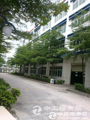 江门高新产业核心区出租办公厂房2000平米-图3