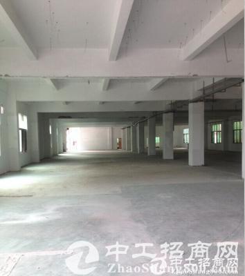 江门高新产业核心区出租办公厂房2000平米-图4