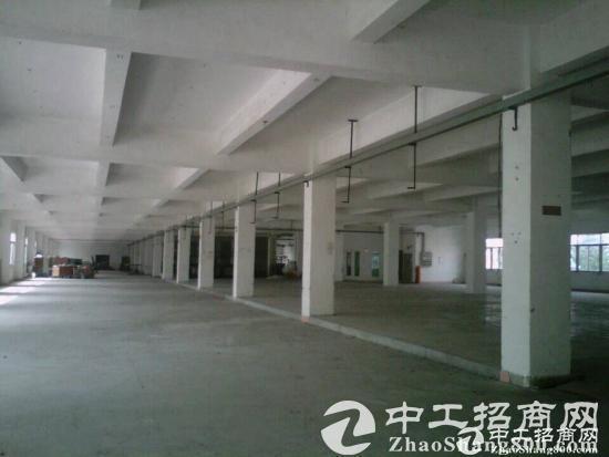 江门高新产业核心区出租办公厂房2000平米-图5