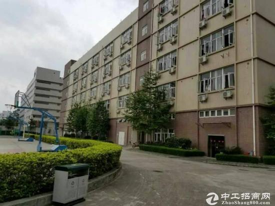 江门产业园厂房出租 6000平方 适合智能制造企业
