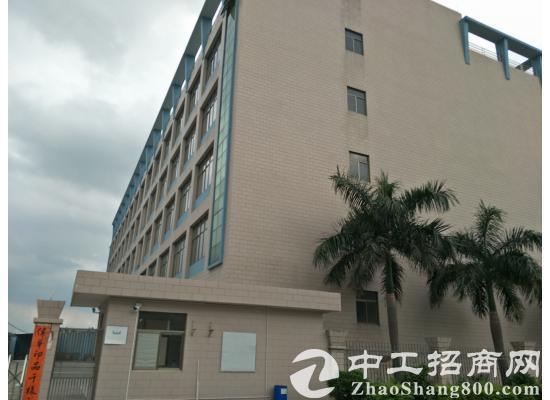 茶山镇全新标准厂房5层13000平方米,低价出租