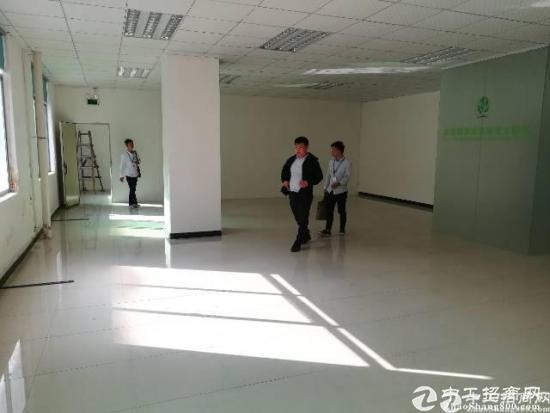 新出龙华油松天汇附近精装修厂房390平招租