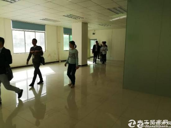 新出龙华油松天汇附近精装修厂房390平招租-图2