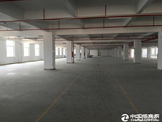 龙岗宝龙新出一楼高度6米3500平方带有红本-图5
