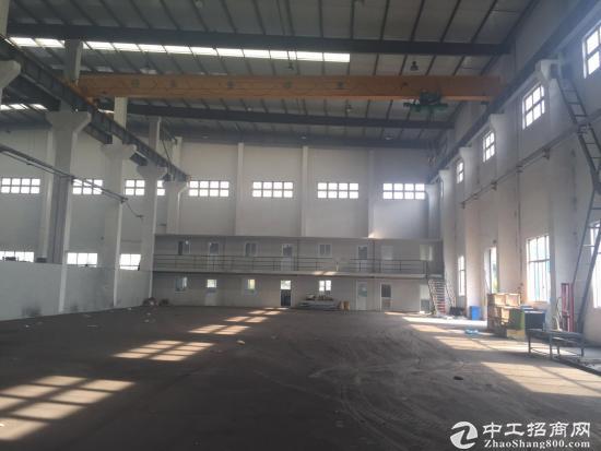 奉贤区南桥奉浦1300标准厂房出租