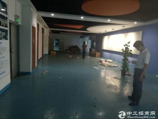 福永高速出入口红本厂房2500平方-图4