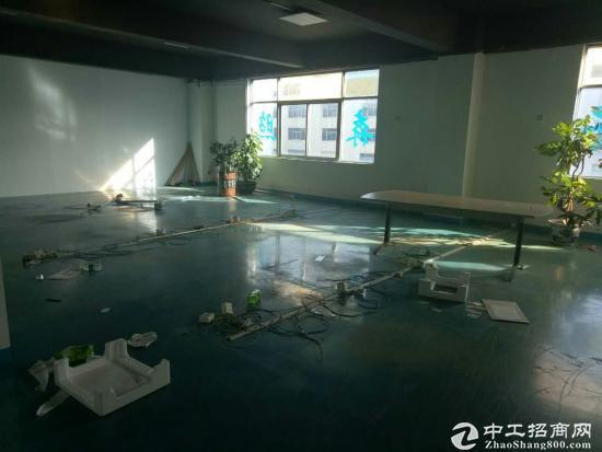 福永高速出入口红本厂房2500平方-图5