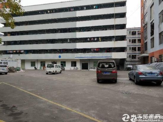 龙岗区横岗镇四联工业区新出一楼厂房1600平-图3