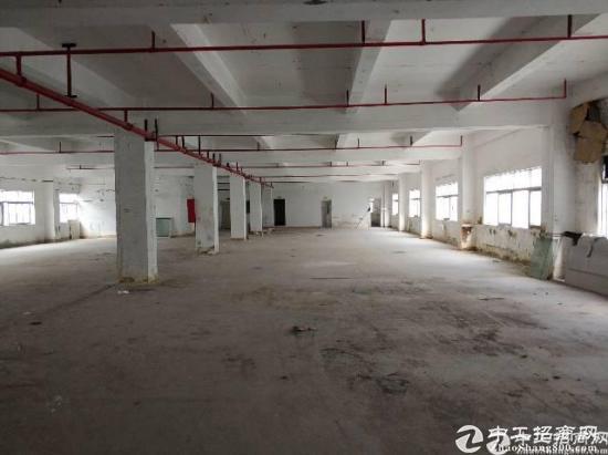 龙岗区横岗镇四联工业区新出一楼厂房1600平-图4