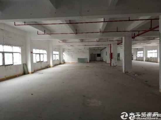 龙岗区横岗镇四联工业区新出一楼厂房1600平