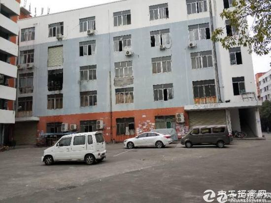龙岗区横岗镇四联工业区新出一楼厂房1600平-图2