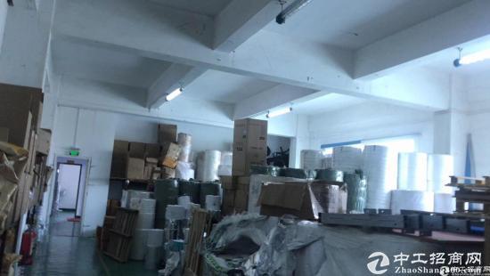 龙华花园式厂房600平招租带装修直接拎包进驻-图3