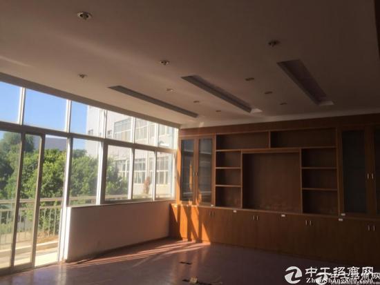 龙华清湖双地铁口带红本独院3000平大小可分租