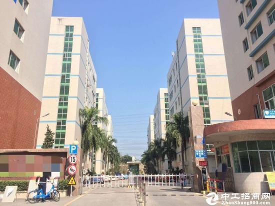 龙华大浪行政中心区带装修电商园400平招租