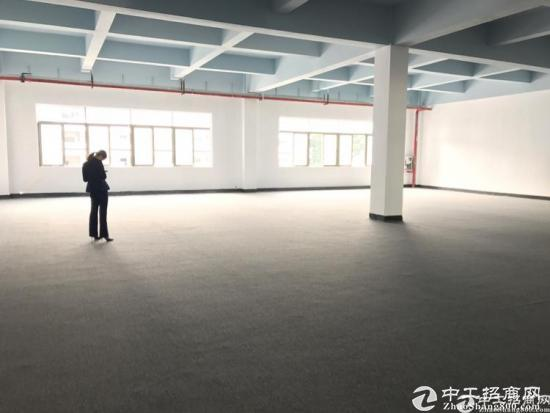 龙华油松中心处精装修招租大小户型100平起-图3