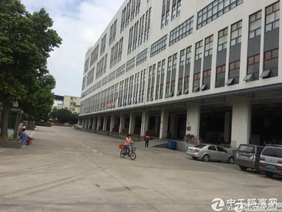 华南城专业物流仓储23000平米红本仓库招租