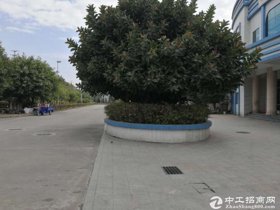 永和开发区超靓工业园33428平方厂房仓库招租