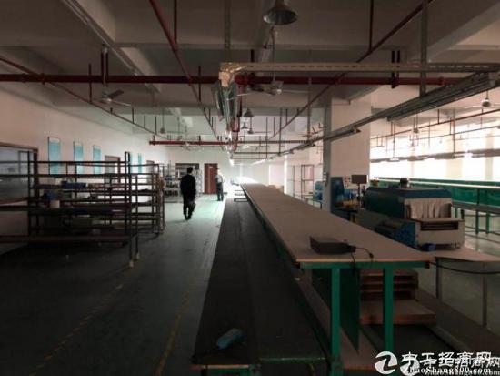 福永沿江高速出口带装修不用转让费2500平-图3